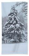 Snow Conifer 2-1-15 Beach Towel