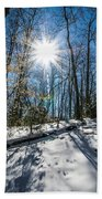 Snow Covered Forest Beach Towel