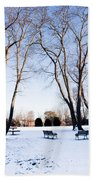 Snow Covered Green Beach Towel