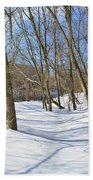 Snow Covered Path  Beach Towel