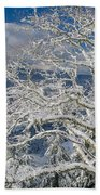 Snow Covered Tree And Winter Scene Beach Towel