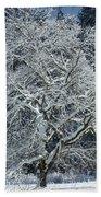 Snow Covered Winter Beach Towel