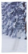 Snow-dappled Woods Beach Towel
