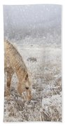 Snow Falling On Horses Beach Towel