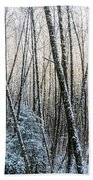 Snow Falls On The Alders  Astoria Beach Towel