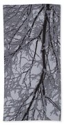 Snow Frosted Branches Beach Towel