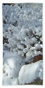 Snow Frosted Bush Beach Towel