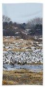 Snow Geese Beach Towel