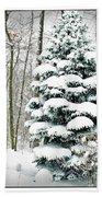 Snow In Ohio Beach Sheet