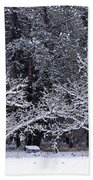 Snow In The Valley Beach Towel
