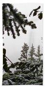 Snow In Trees At Narada Falls II Beach Towel
