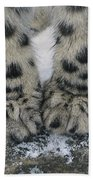 Snow Leopard Feet Beach Towel