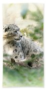 Snow Leopard Pose Beach Towel
