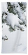 Snow On Winter Branches Beach Towel by Elena Elisseeva