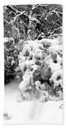 Snow Scene 1 Beach Towel by Patrick J Murphy