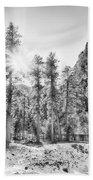 Snow Trees Beach Towel