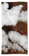 Snow Twig Abstract Beach Towel