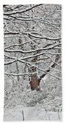 Snow White Forest Beach Towel