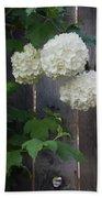 Snowball Flowers Beach Towel