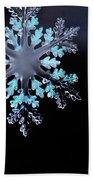 Snowflake In Window 20471 Beach Towel