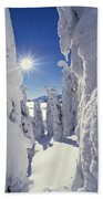 Snowscape Snow Covered Trees And Bright Sun Beach Towel