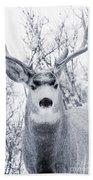 Snowstorm Deer Beach Towel
