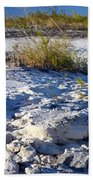 Snowy Beach Beach Towel