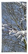 Snowy Branches With Blue Sky Beach Towel