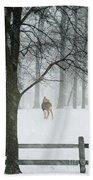 Snowy Deer Beach Towel