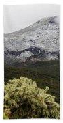 Snowy Desert Mountain Beach Towel