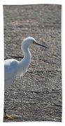 Snowy Egret Walk Beach Towel