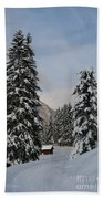 Snowy Fir Trees  Beach Towel