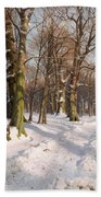 Snowy Forest Road In Sunlight Beach Towel
