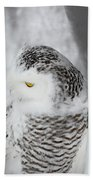 Snowy Owl 2 Beach Towel