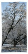 Snowcovered Trees Beach Towel
