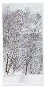 Snowy Trees In Winter Park Beach Towel