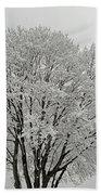 Snowy Trees Beach Towel