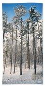 Snowy Trees Beach Sheet
