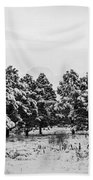 Snowy Winter Pine Trees In Black And White Beach Towel