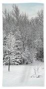 Snowy Woodland Beach Towel