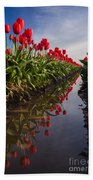 Soaring Crimson Tulips Beach Towel