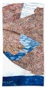 Soaring Eagle Rays Beach Towel