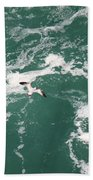 Soaring Over The Falls Waters Beach Towel