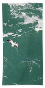 Soaring Over The Falls Waters Too Beach Towel