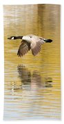 Soaring Over The River Beach Towel