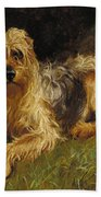 Soft Coated Wheaten Terrier  Beach Sheet