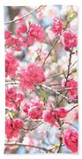 Soft Colors Of Spring Beach Towel