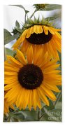 Soft Colors Sunflowers Beach Towel