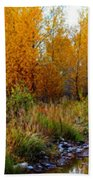 Soft Forest Colors Beach Towel