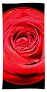 Soft Red Rose Closeup Beach Towel